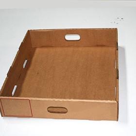 box-type-4(2)